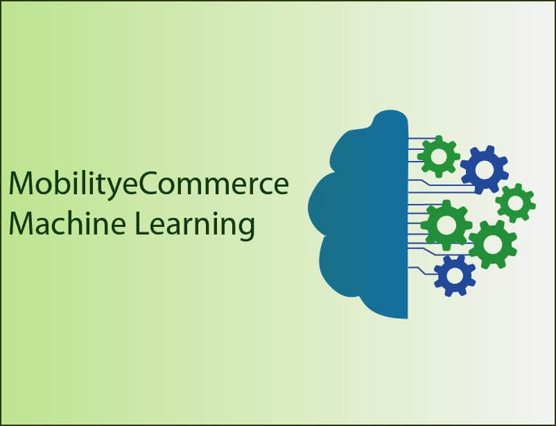 Machine Learning in MobilityeCommerce